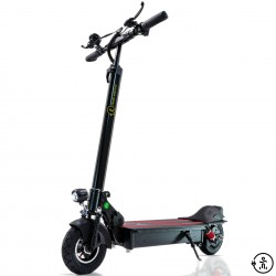 "electric scooter S8 X 8Ah (8"")"