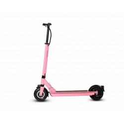 electric scooter Joyor F1 (8'')