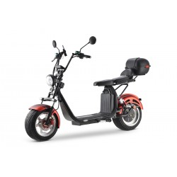 "electric scooter E GEN 4.0AL EEC (12"")"
